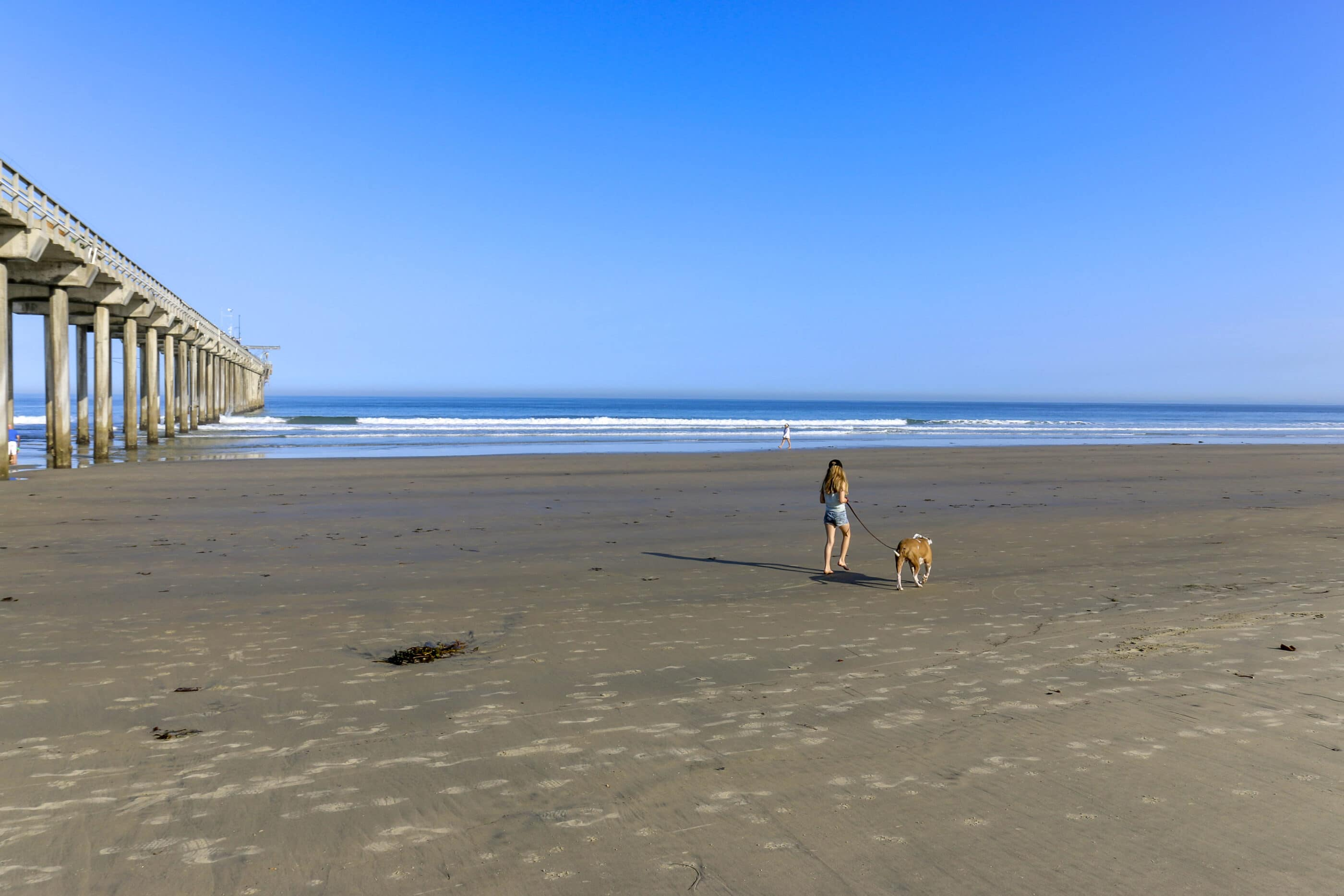 My daughter walks our dog on La Jolla Shores Beach, one of the best La Jolla beaches for kids.