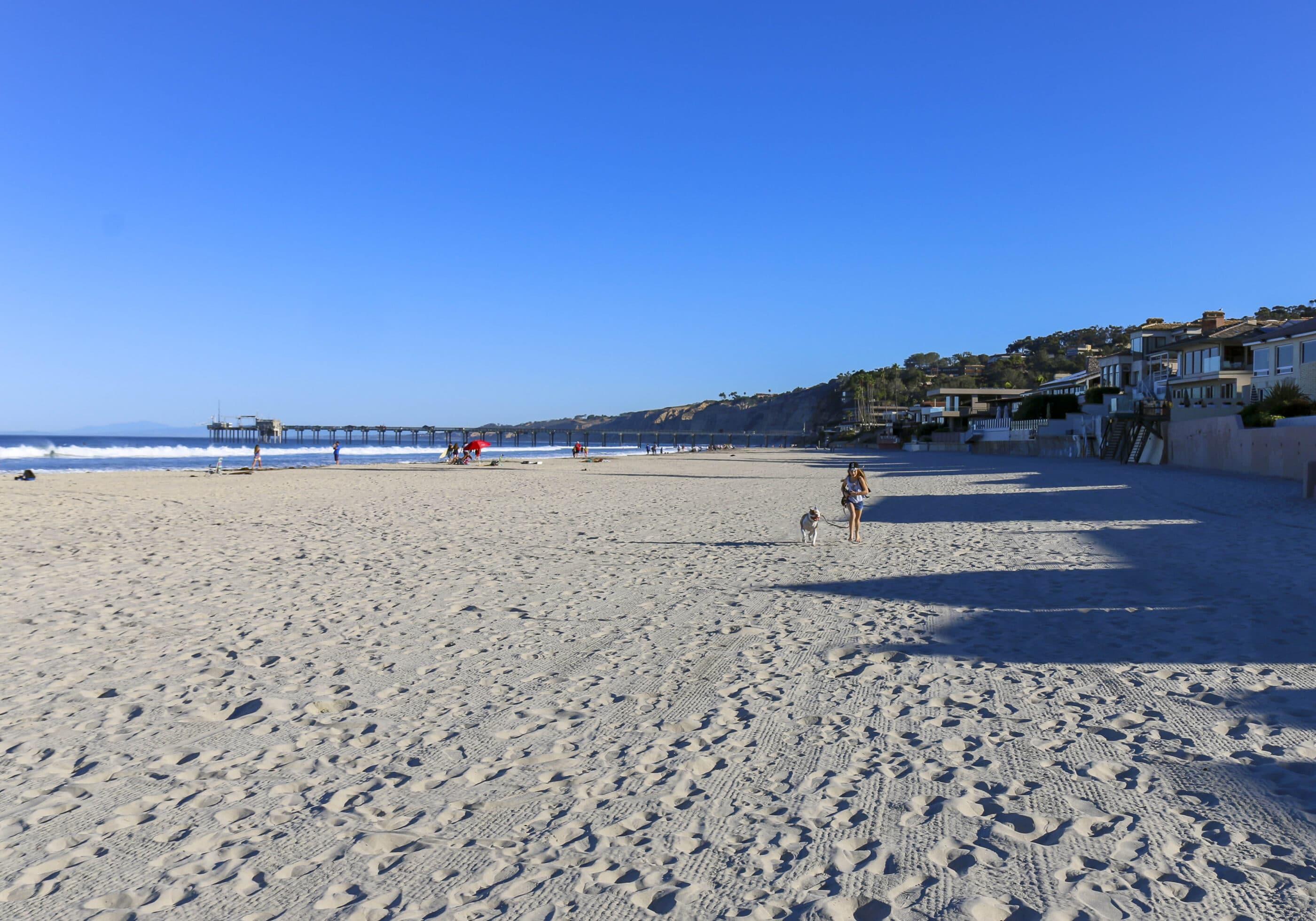 A morning dog walk on La Jolla Shores Beach.