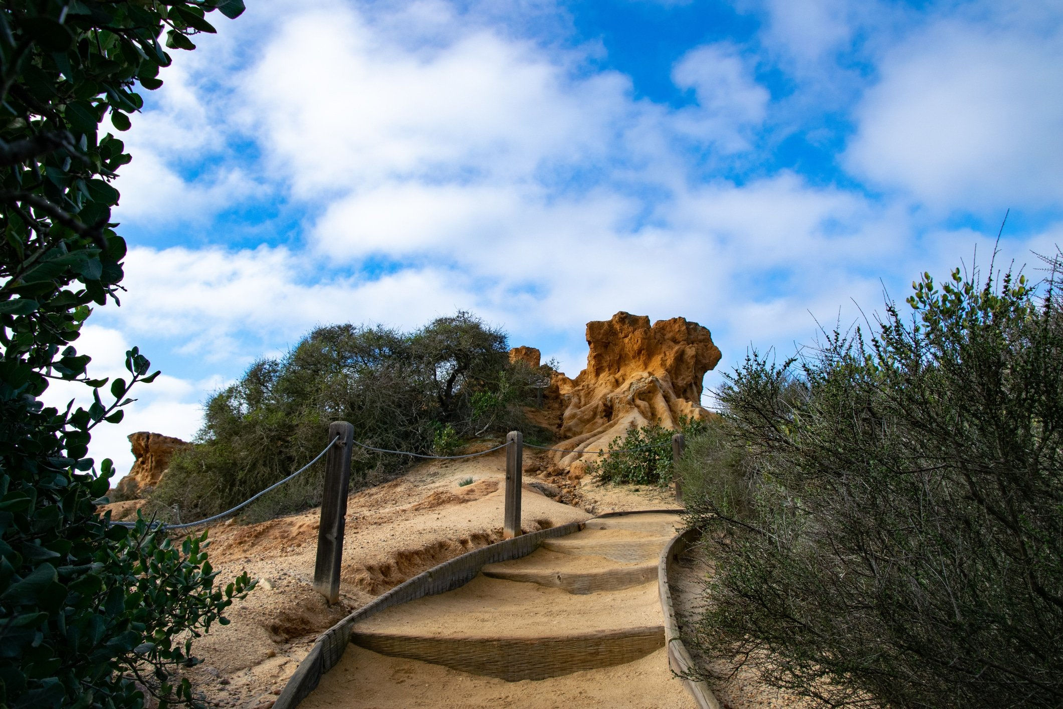 The stairs on the trail up to Red Butte, the famous rock formation in Torrey Pines State Reserve.