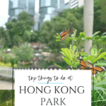 Find the best things to do in Hong Kong Park from a mom who has spent a lot of time in this HK park running, turtle watching, and enjoying the facilities.