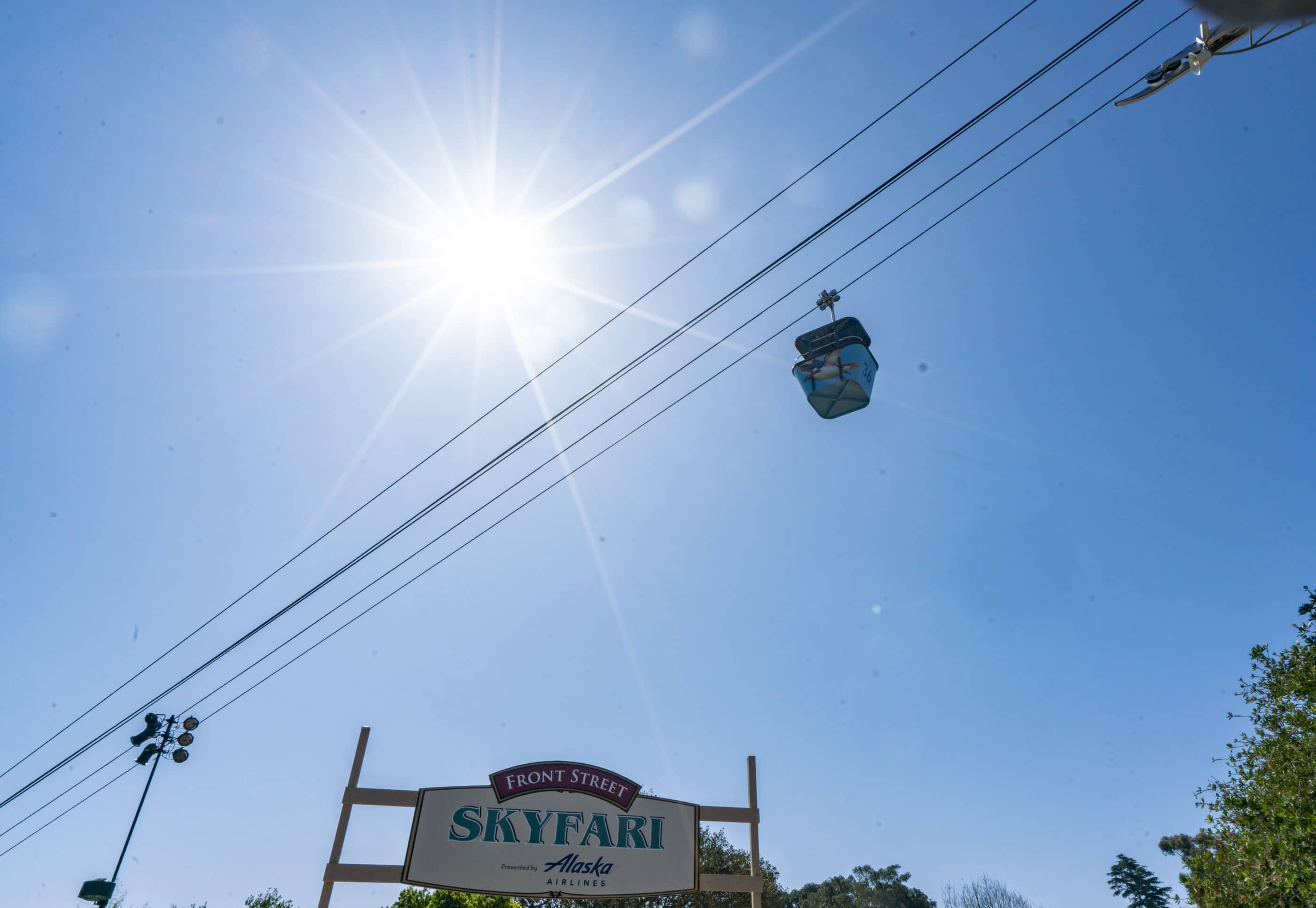 A Skyfari tram heads north on the cable lines against a blue sky.
