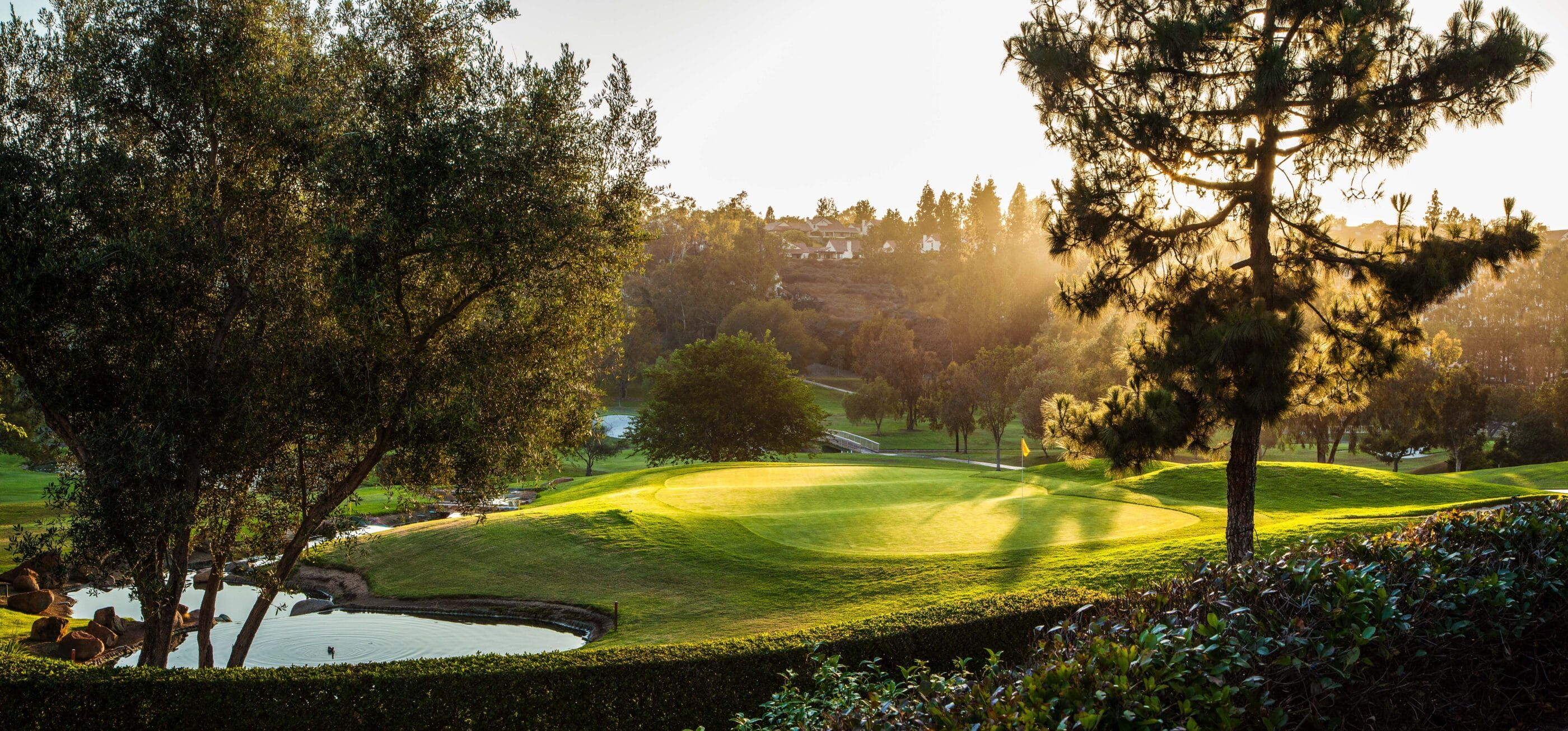 The golf course at golden hour