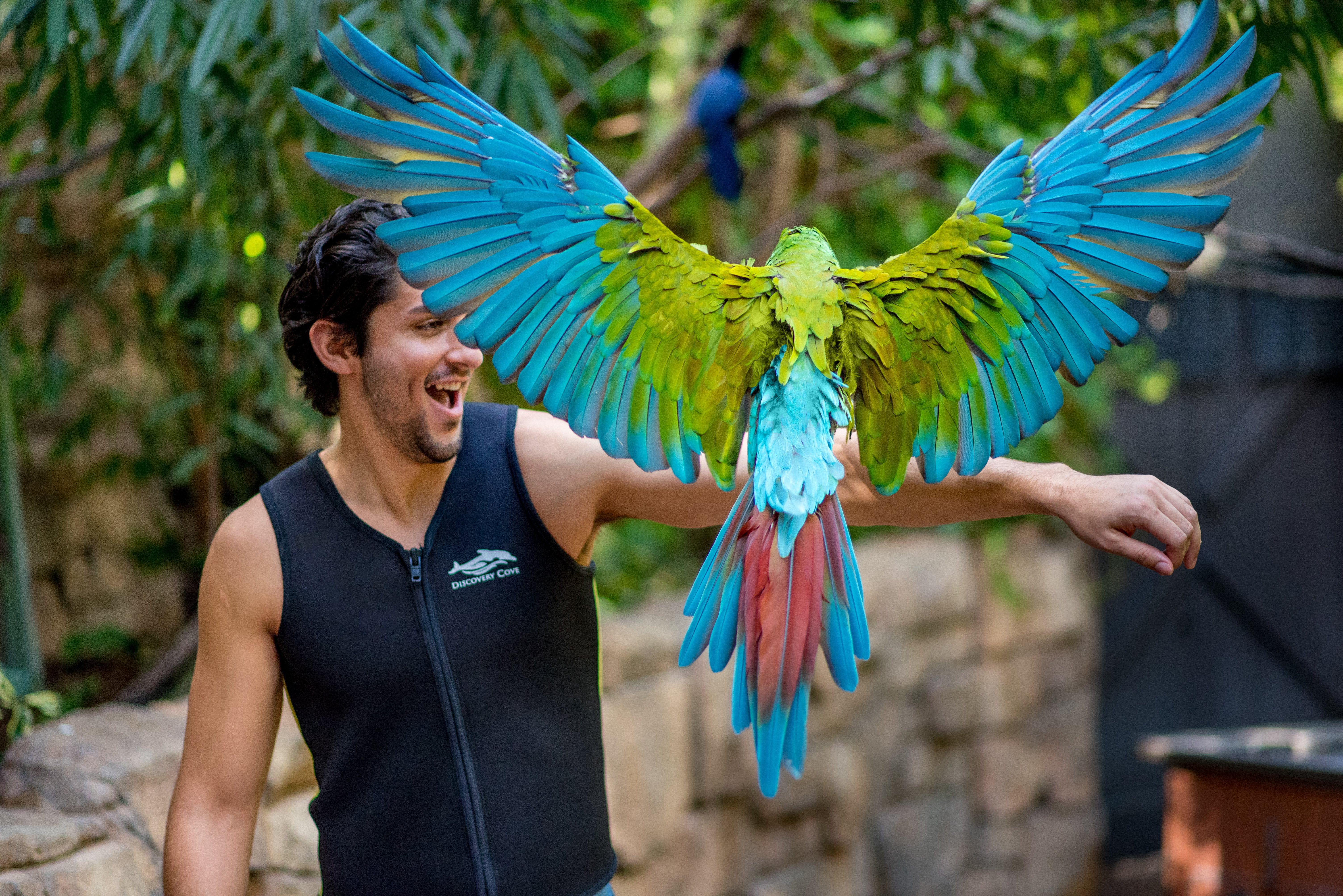 A parrot flies onto a guest's arm in the Aviary.