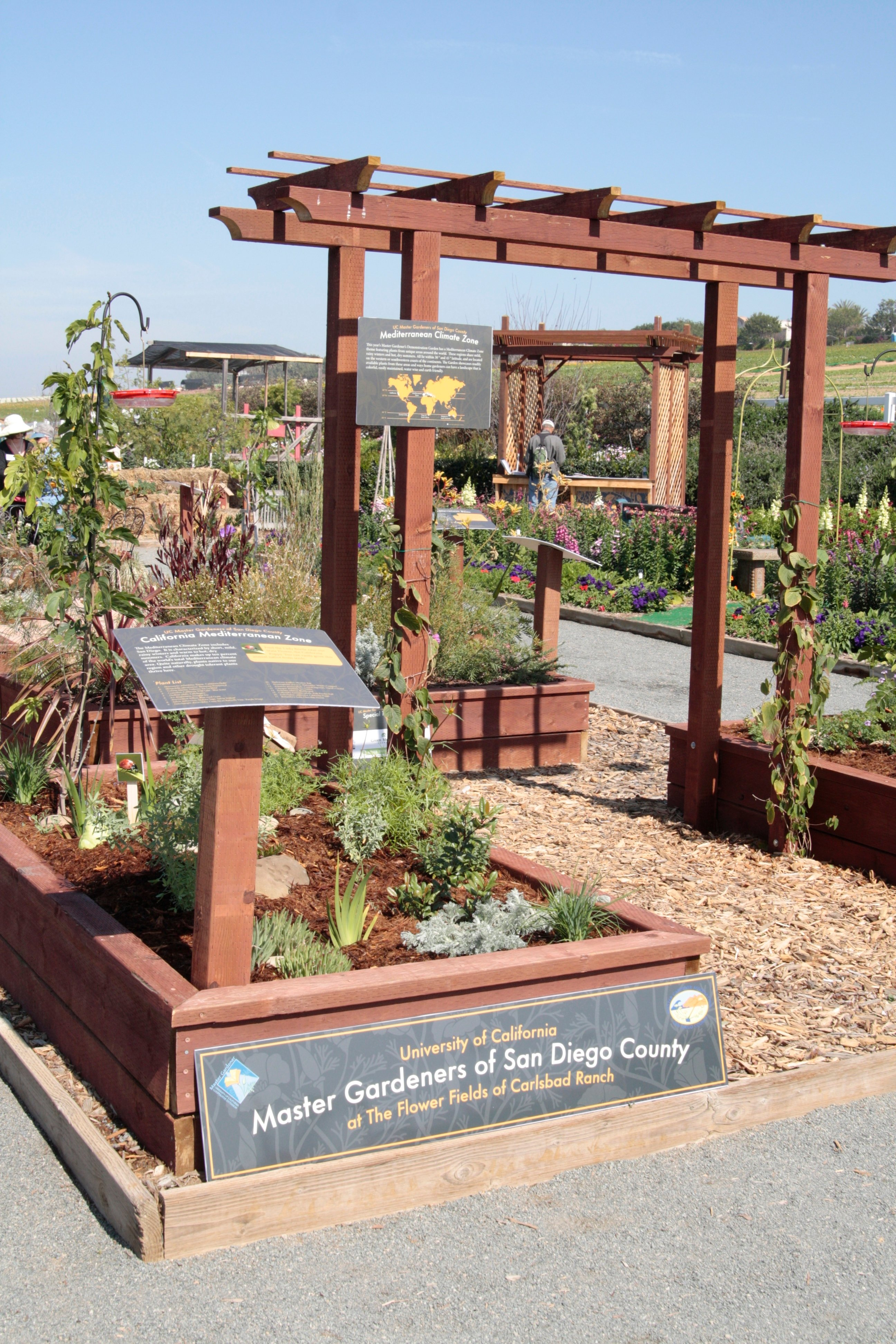 Raised garden beds put together by Master Gardeners of San Diego County.