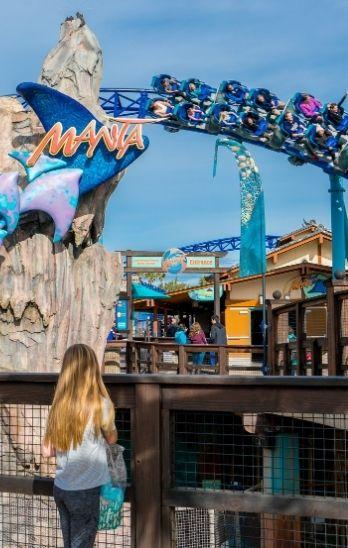 Guests ride Manta roller coaster at SeaWorld San Diego