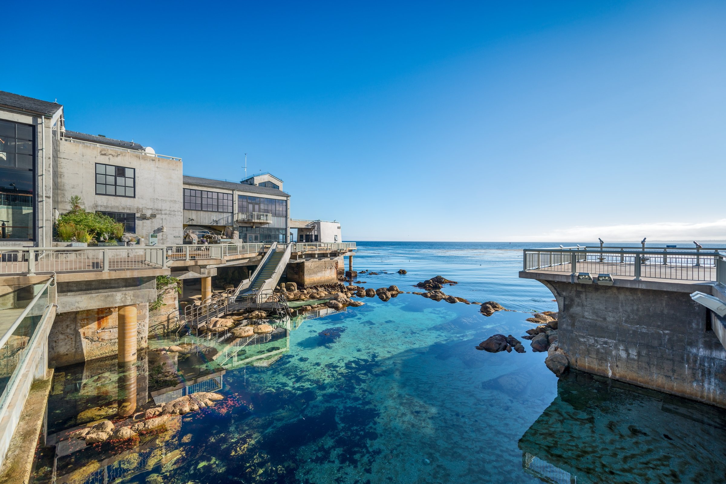 Scenic shot of the Great Tide Pool and exterior back deck of the Monterey Bay Aquarium.