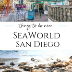 The best things to do near SeaWorld San Diego include picnic spots, playgrounds, water sports, beach activities, and more animal encounters.