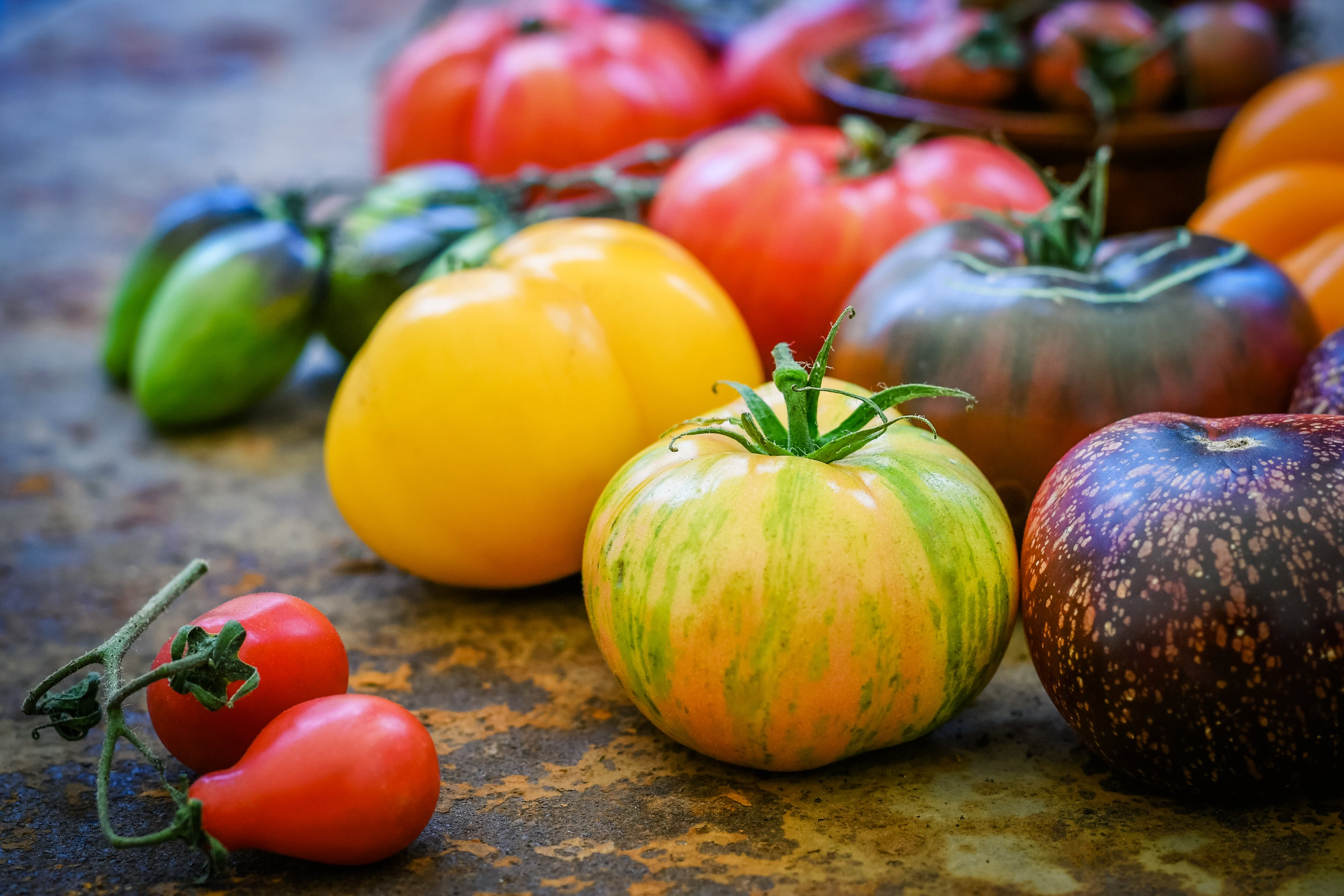 Colorful heirloom tomatoes on a table.