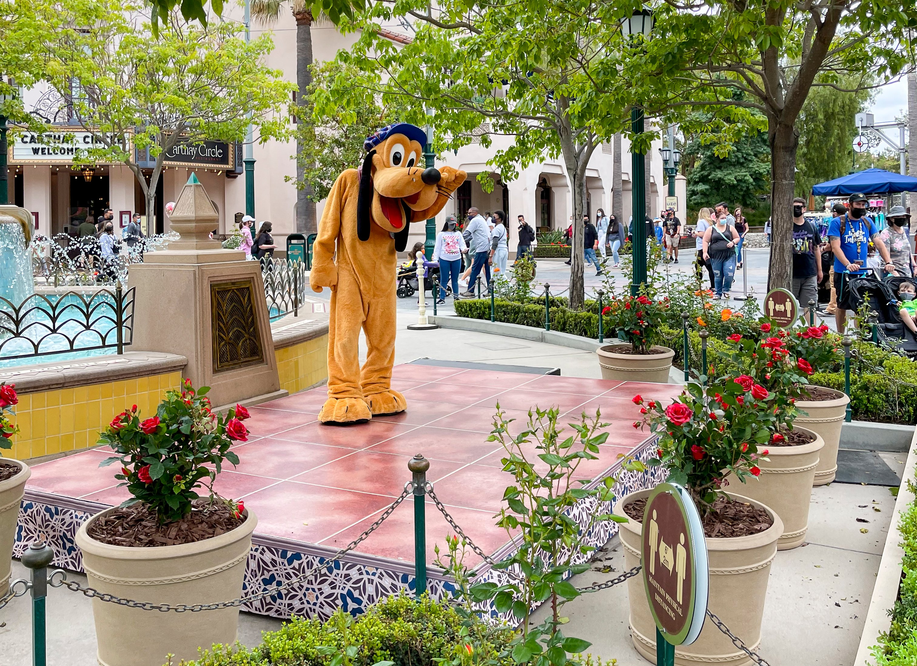 Goofy greets guests from a distance at Disney California Adventure park.