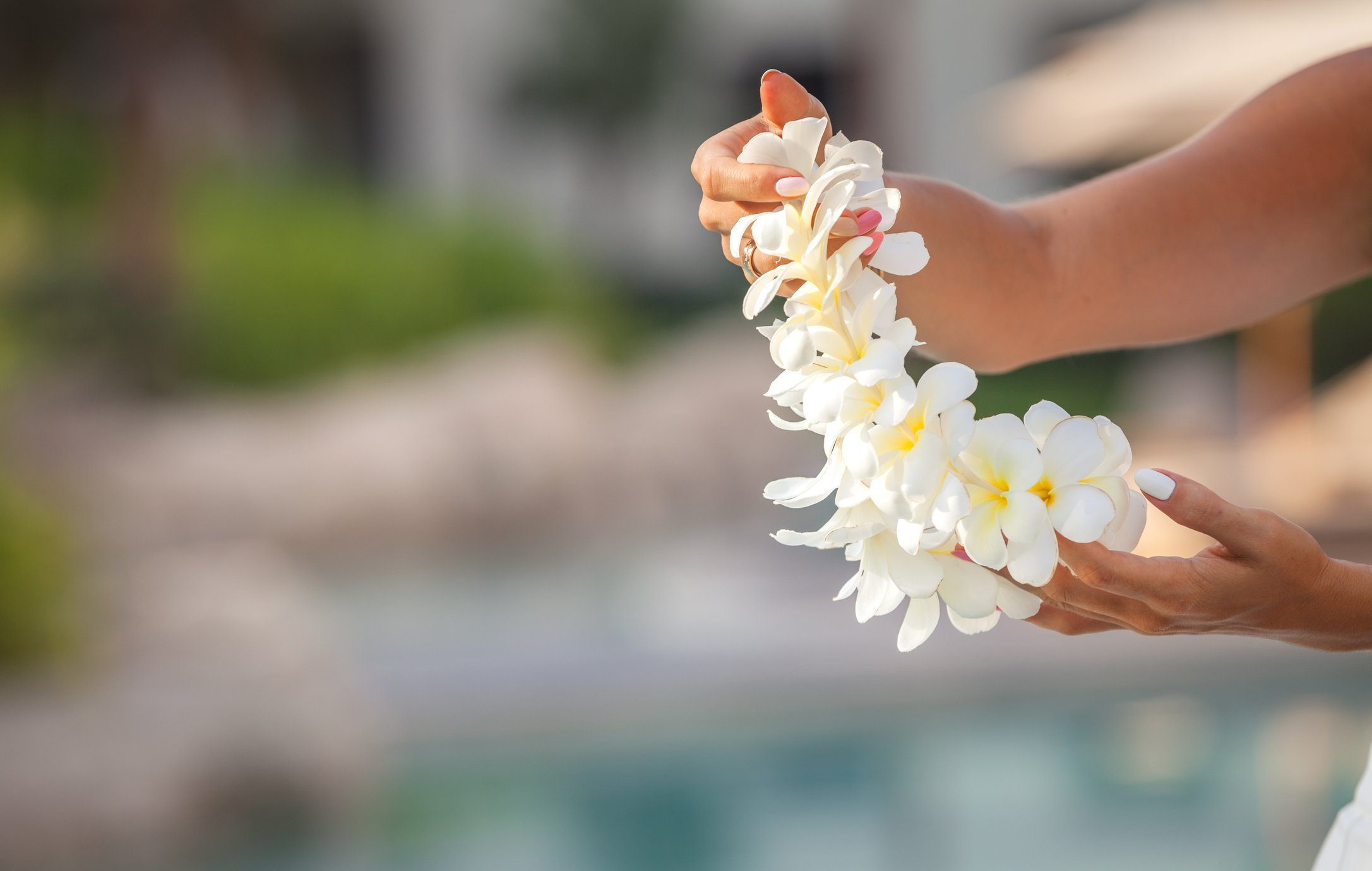 A women holds a fresh flower lei