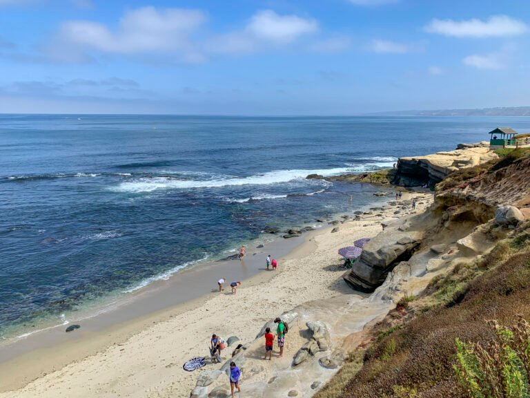 Shell Beach La Jolla: 6 Reasons to Love It From Tide Pools to Shells