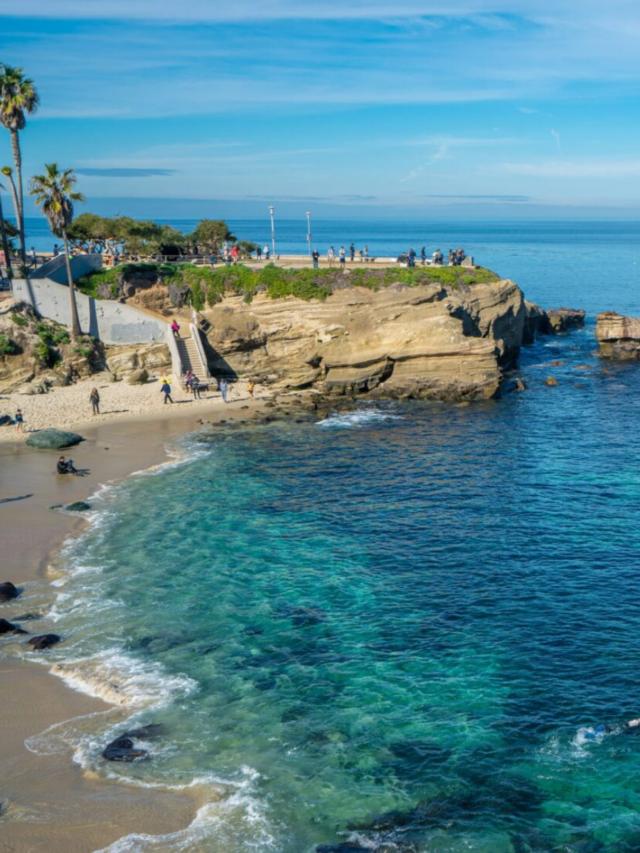 Best Beaches in La Jolla Story